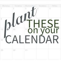 Calendar-Thumb_V2