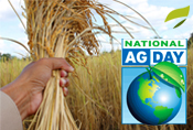3_15_16-National-Ag-Day_secondary